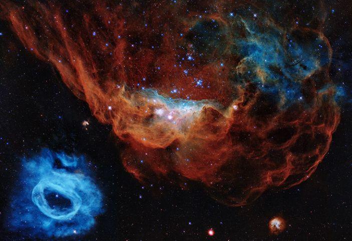 The image shows the giant nebula NGC 2014 and its neighbor NGC 2020