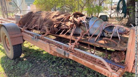 Un uriaș crocodil lung de 14 metri a fost prins într-un loc turistic din Australia